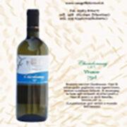 Export & Import: Vino Chardonnay Dry